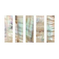 Perlmutter-Schübchen Makassar, farbig, 5 Stck, Cello