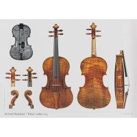 Póster, violín, Antonio Stradivari, »Titian« 1715