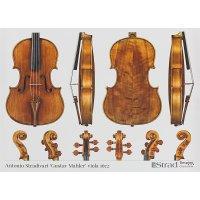 Poster, Viola, Antonio Stradivari, »Gustav Mahler« 1672