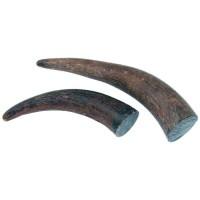 Segment de pointe de corne de buffle, 75-130 g