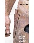Dictum Workshop Programm