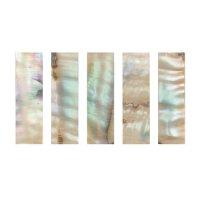 Bow Slides Pearl, Colored, 5-Pce Set, Cello