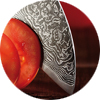Expert knowledge on Japanese Knives - Hocho by DICTUM