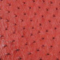 Cuir d'autruche, peau entière, rouge campari
