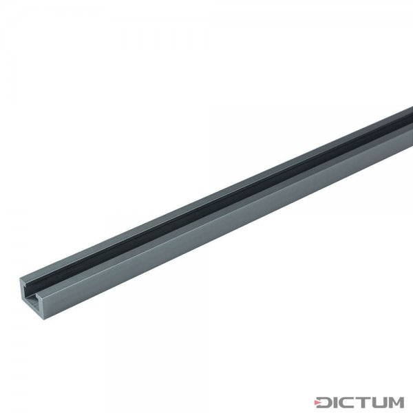 Carril con ranura en T DICTUM, 610 mm
