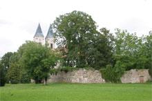 Experience nature in Niederalteich