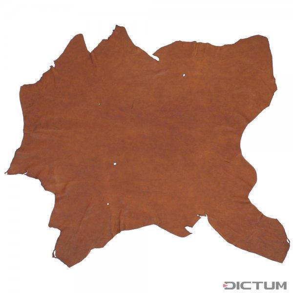 Peau d'élan, brun moyen, 1,20-1,30 m²